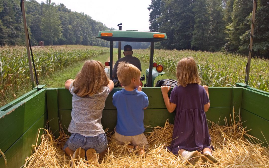 Planning the Perfect Fall Hayride